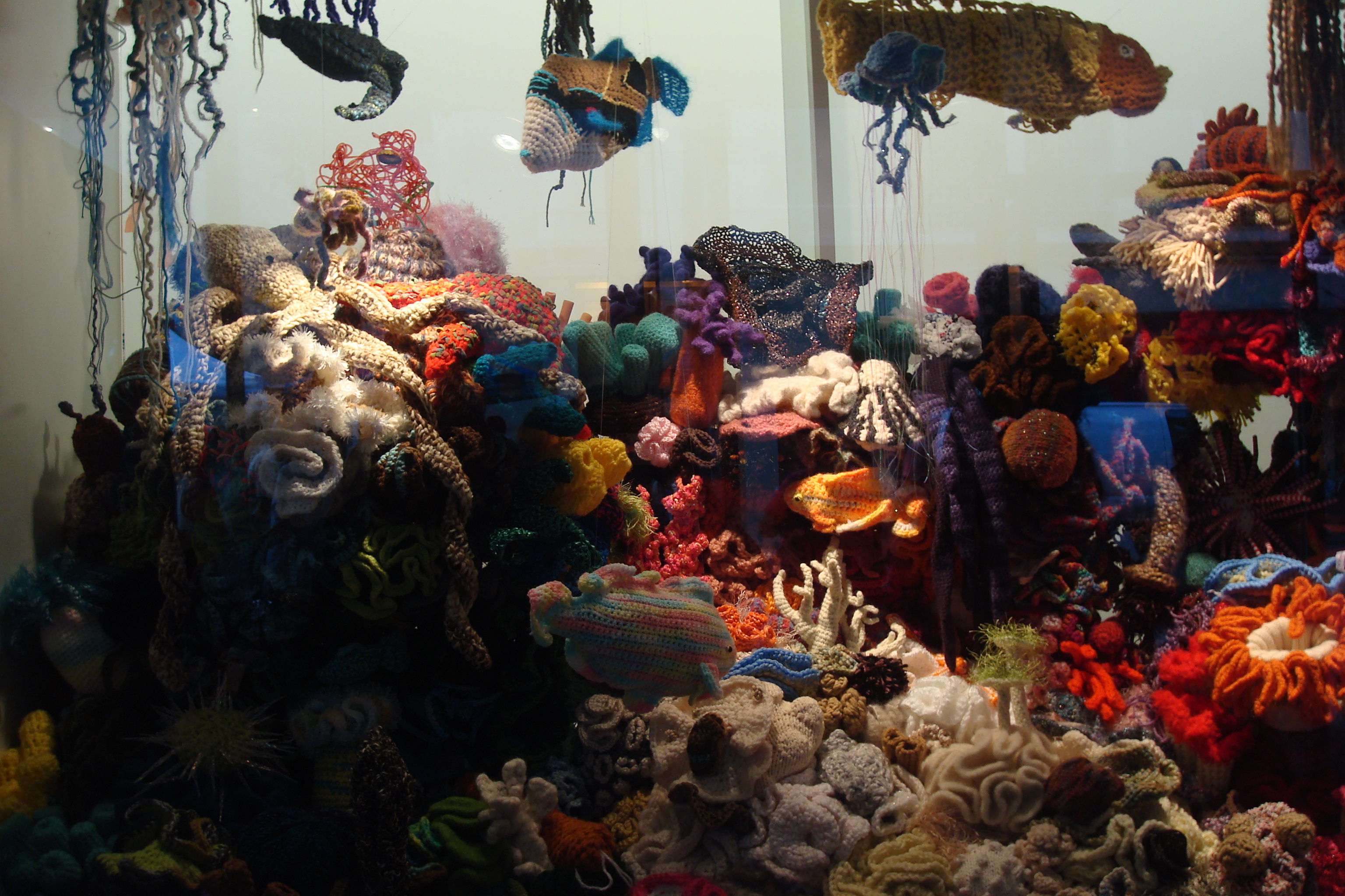 The Hawaii Hyperbolic Crochet Coral Reef Exhibit