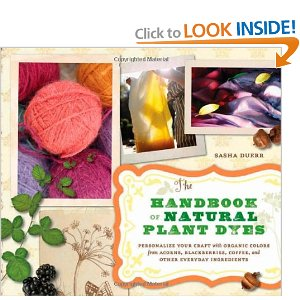 The book that inspired the dye party. Source: Amazon.com