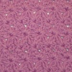 A closeup of the star stitch pattern I used for my crochet cozy/purse.