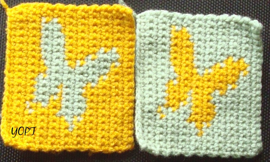 "New Crochet Photo ""Practice"" Pattern"